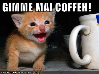 Post image for I Can Haz Coffee